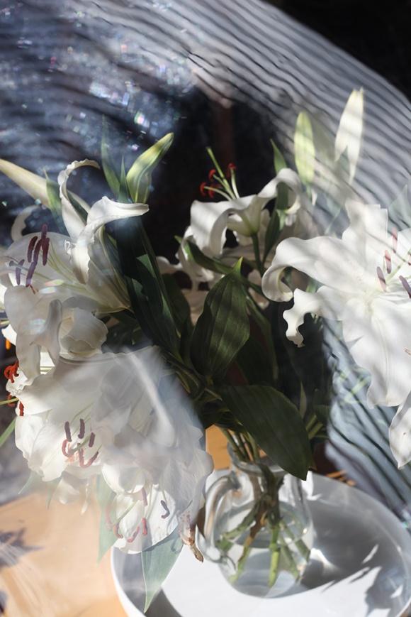 Lillies 2, Madeleine Corcoran
